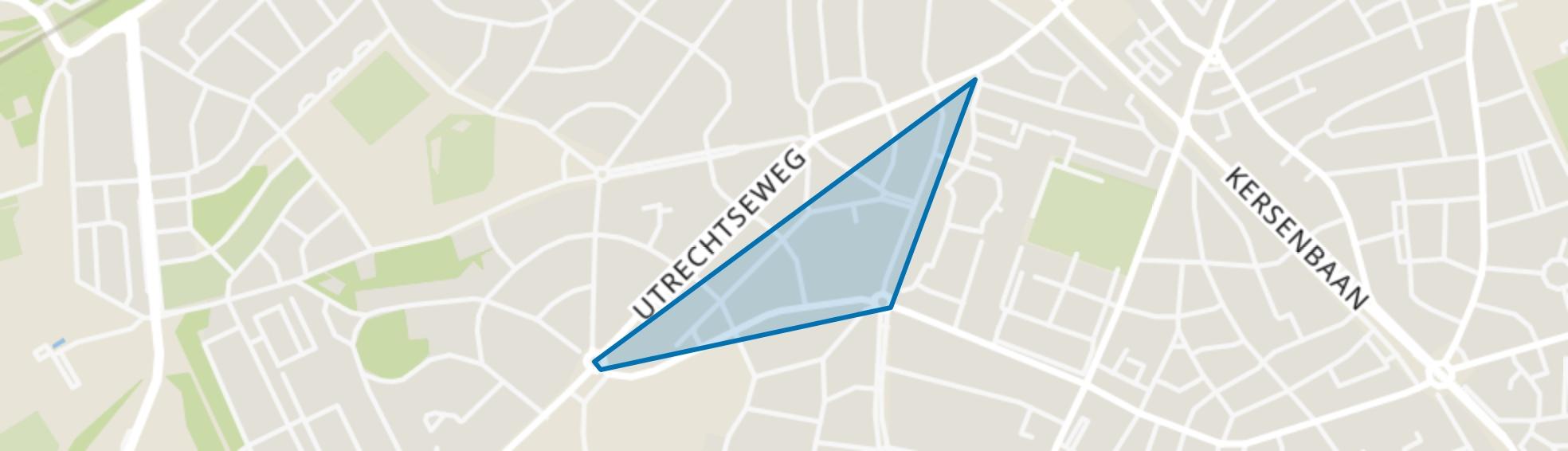 Huygenslaan, Amersfoort map