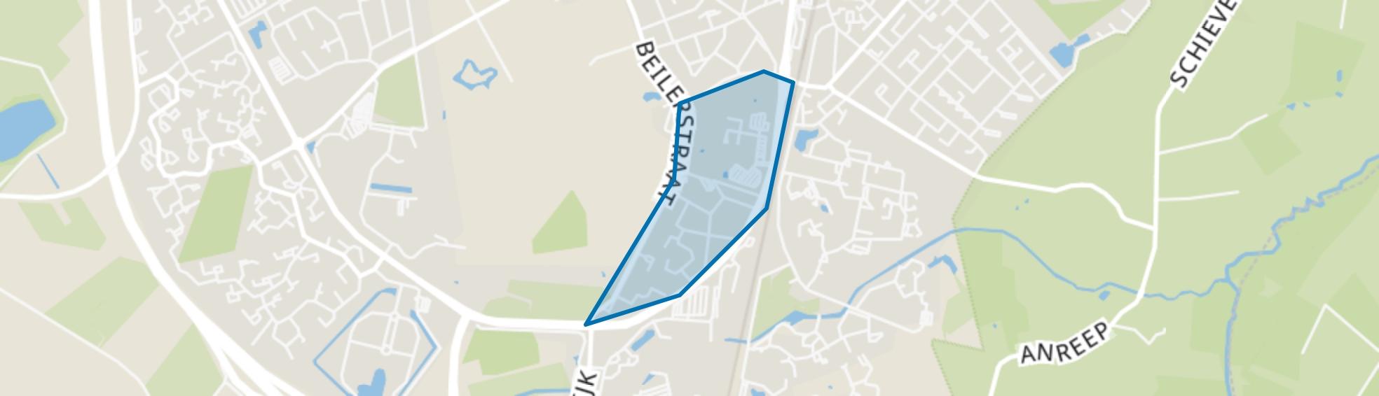 Zuiderpark, Assen map