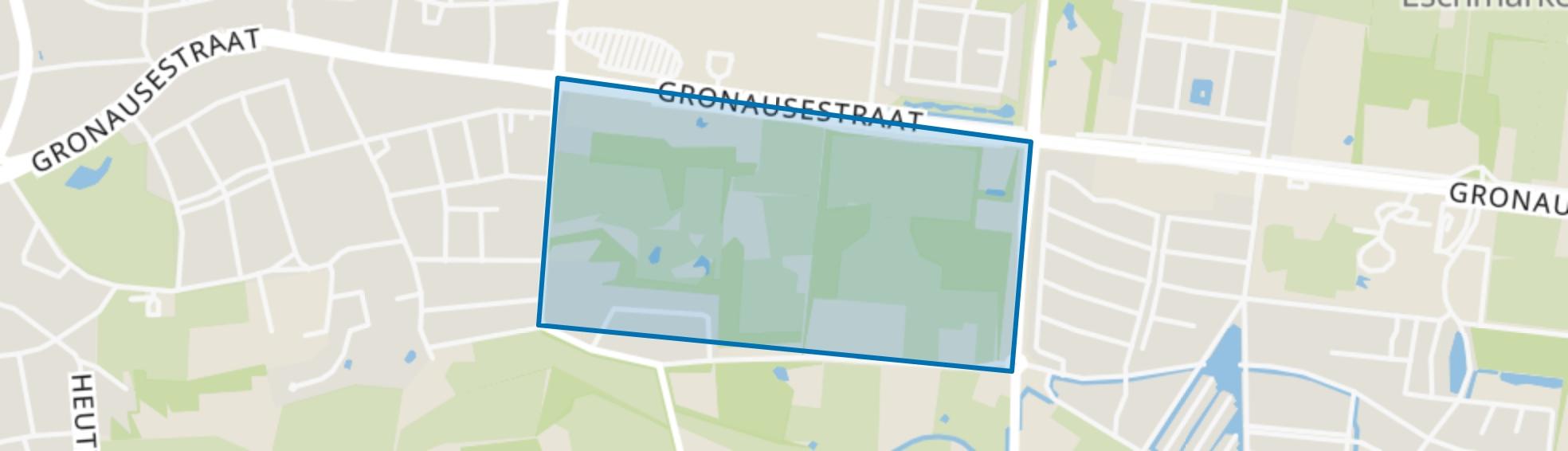 De Leuriks, Enschede map